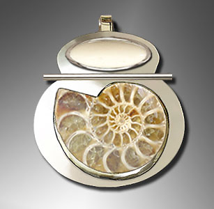 Ammonite fossil from England, Bone, Sterling